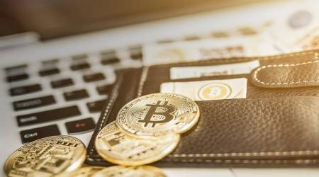 Что такое и как работают мультивалютные кошельки для криптовалют?
