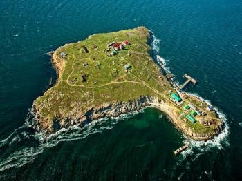 Саакашвили предложил открыть казино на острове Змеиный